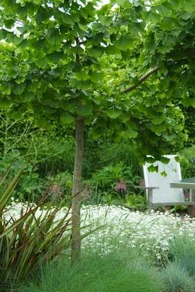 PdM_Gartenplanung_Teaser